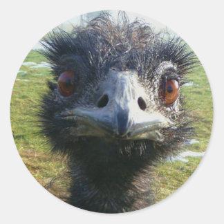 Ojos parecidos a un abalorio EMU Pegatina Redonda