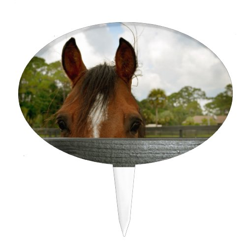 ojos sobre la cabeza de caballo de la cerca figura para tarta
