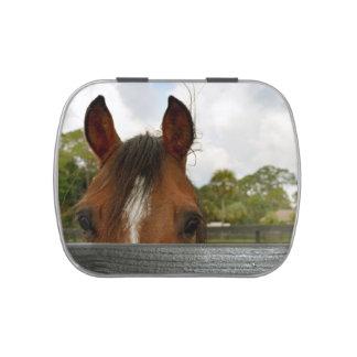 ojos sobre la cabeza de caballo de la cerca jarrones de caramelos