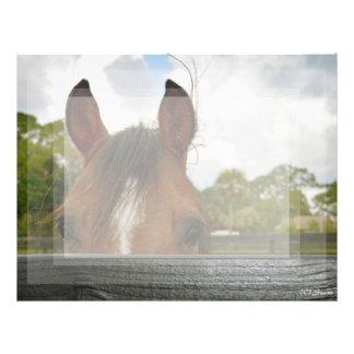 ojos sobre la cabeza de caballo de la cerca membrete a diseño