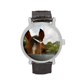 ojos sobre la cabeza de caballo de la cerca reloj de mano