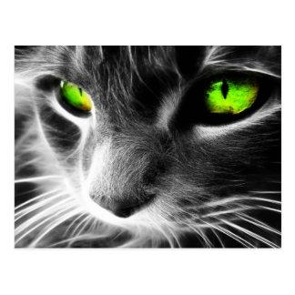 Ojos verdes del gato gris postales