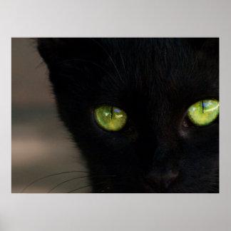 Ojos verdes del gato negro de BLGR Impresiones