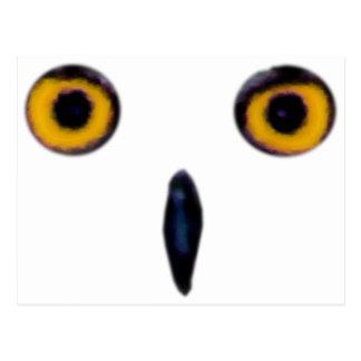 Ojos viejos sabios del búho postal