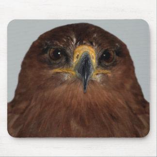 Ojos y cabeza de Eagle Alfombrillas De Ratón
