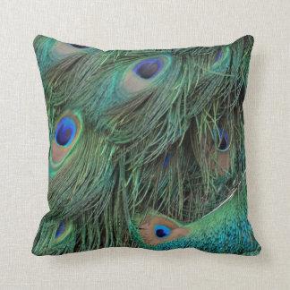 Ojos y plumas del pavo real almohada