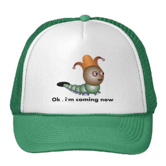 OK hat by rafi talby