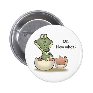 OK. Now what? Pinback Button