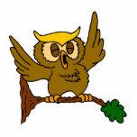 Okala Owl Photo Cut Outs