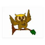 Okala Owl Post Card