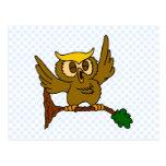 Okala Owl Postcards