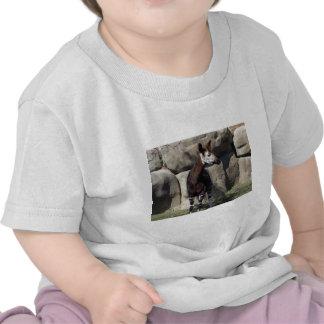 okapi camisetas