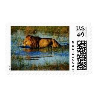 Okavango Delta, Botswana 3 Stamp