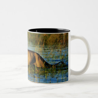 Okavango Delta, Botswana 3 Two-Tone Coffee Mug