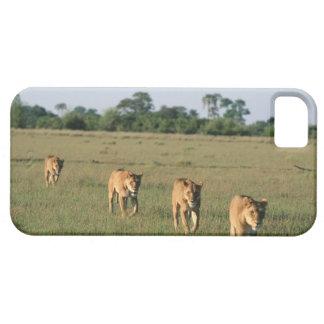 Okavango Delta, Botswana 4 iPhone SE/5/5s Case