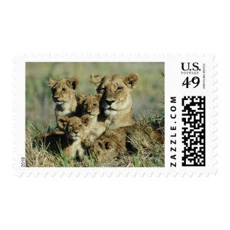 Okavango Delta, Botswana Stamp
