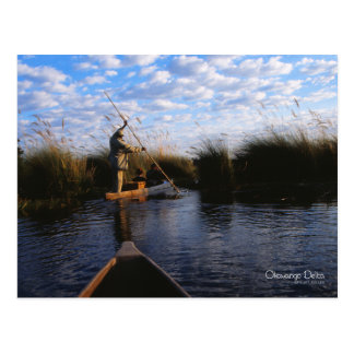 Okavango Delta Postcard