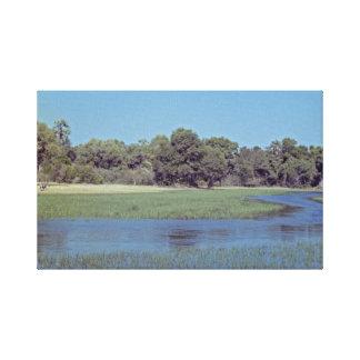 Okavango Delta Scenic Stretched Canvas Print