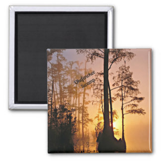 Okefenokee Swamp 2 Inch Square Magnet