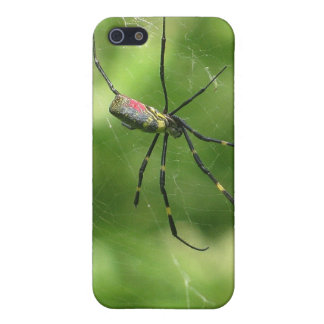 Okinawa Spider Case For iPhone SE/5/5s