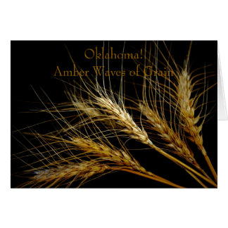Oklahoma! Amber Waves of Grain Cards