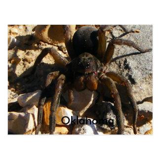 Oklahoma, araña tarjetas postales