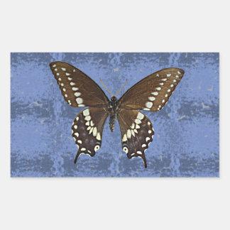 Oklahoma Black Swallowtail Butterfly Rectangular Sticker