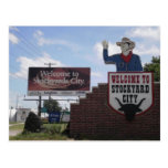 Oklahoma City Stockyards Postcard