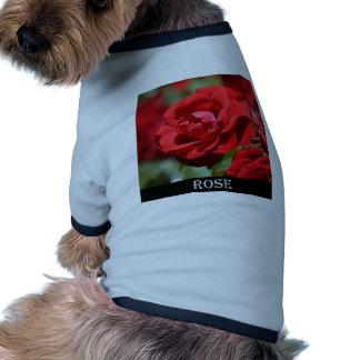 Oklahoma Rose Pet Tee