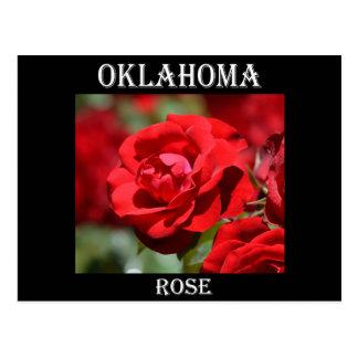 Oklahoma Rose Postcard