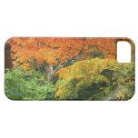 Okochi Sanso, Arashiyama, Kyoto, Japan 2 iPhone 5 Covers
