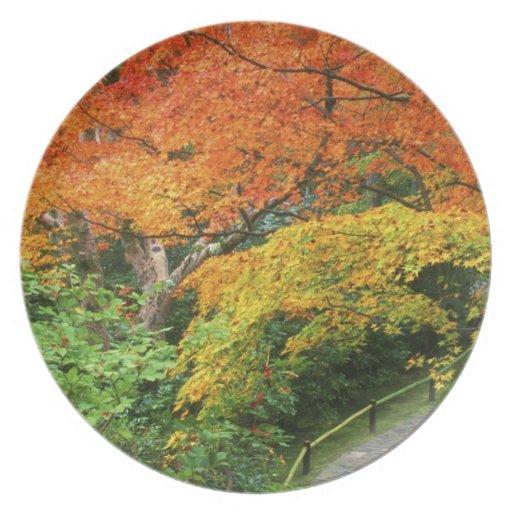 Okochi Sanso, Arashiyama, Kyoto, Japan 2 Party Plate