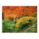 Okochi Sanso, Arashiyama, Kyoto, Japan 2 Postcard