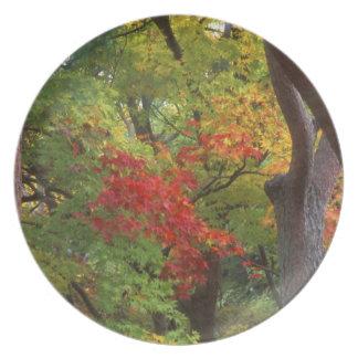 Okochi Sanso, Arashiyama, Kyoto, Japan 5 Melamine Plate
