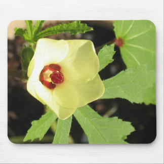 Okra Flower Mouse Pad