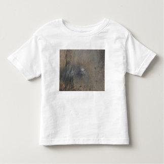 Ol Doinyo Langai in Tanzania Toddler T-shirt