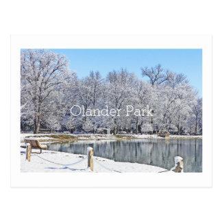 """""""OLANDER PARK BLANKETED IN WHITE"""" POSTCARD"""