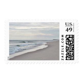 Olas oceánicas sellos