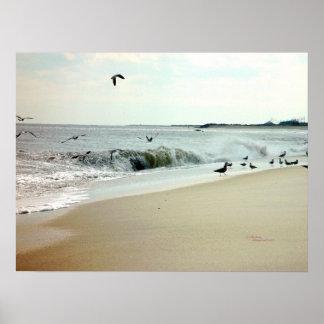 Olas oceánicas y poster de las gaviotas
