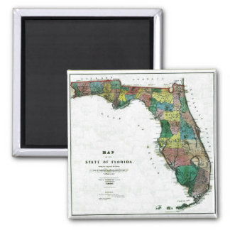 Old 1856 Florida Map 2 Inch Square Magnet