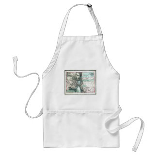Old 1862 Colorado Map Aprons