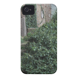 Old abandoned country homestead in the woods iPhone 4 cover