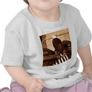 Old Abe-The Wisconsin War Eagle Stereoview ca 1875 T Shirt
