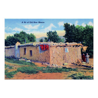 Old Adobe House New Mexico Poster