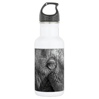 Old African Elephant Stainless Steel Water Bottle