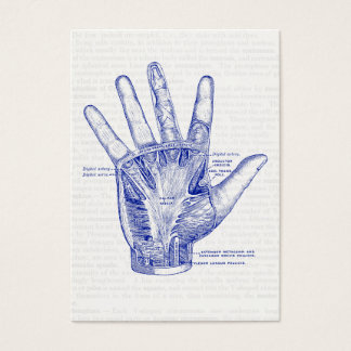 Old Anatomy Drawing Palm of the Hand Business Card