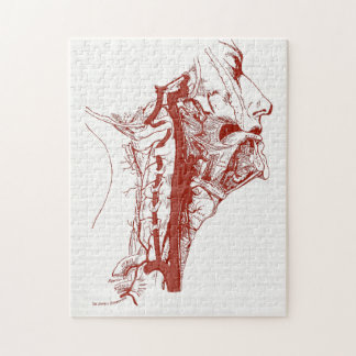 Old Anatomy Illustration Human vertebral arteries Jigsaw Puzzle