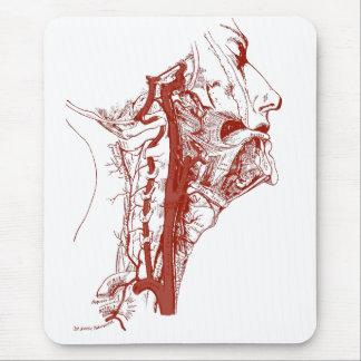 Old Anatomy Illustration Human vertebral arteries Mouse Pad