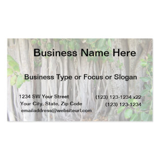 Old ancient ficus tree roots background picture business card