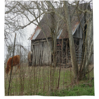 Exceptional Old Antique Barn Shower Curtain